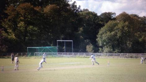 Cricket at Cattistock.